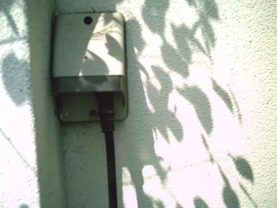 葉っぱの影も好きです(σ・∀・)σYo♪+゜