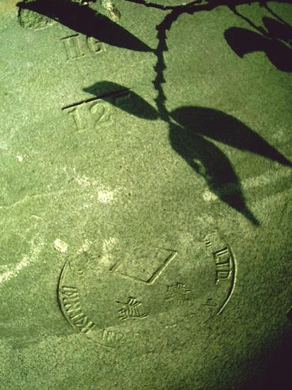 お店の庭にある大きな壺に映った影