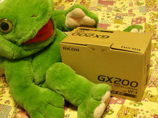 箱もなんだかオサレですー♪+゚ カエルくんも嬉しそう!