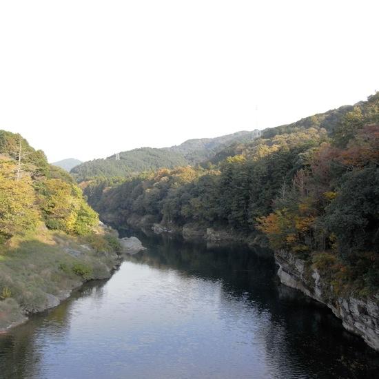 吊り橋から見た景色