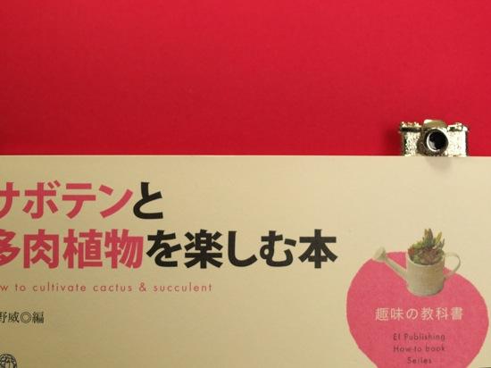 サボテンと多肉植物を楽しむ本の右上に注目(´▽`*)