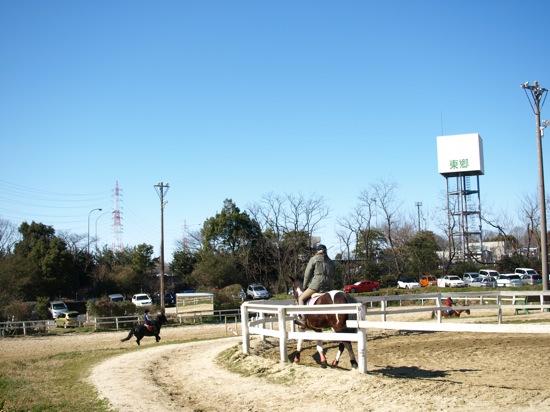 乗馬クラブなどもあり、ウマに乗ってる人がたくさんいました。なんか優雅で楽しそうでした。