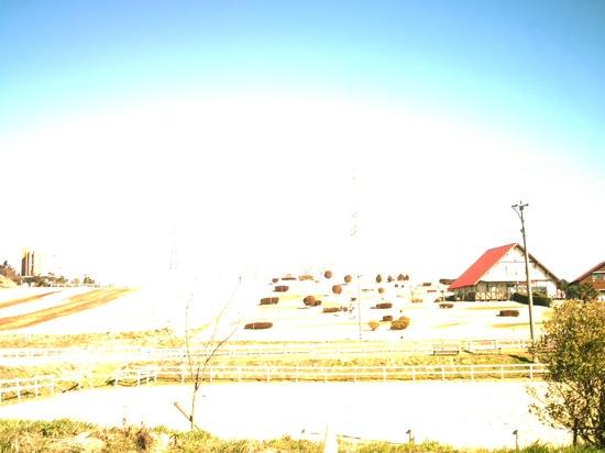 VQ7024:白飛びしまくり愛知牧場の写真からスタートヽ(´ー`)ノ