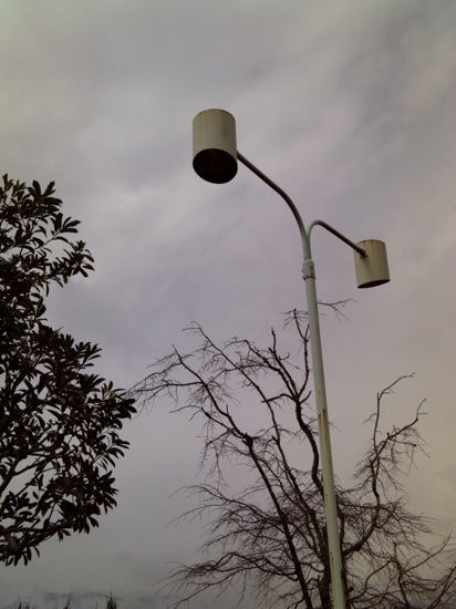 くもり・街灯・木々