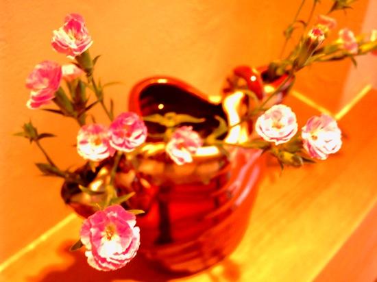 なんか飾ってあった花ww