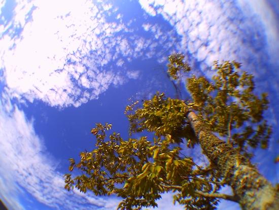 なんか空が地球っぽい感じになるから好き(´▽`*)