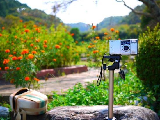 これはフィルムカメラ「を」撮った写真(笑)
