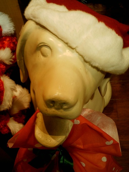 サンタ犬(U´Д`)ワンワン