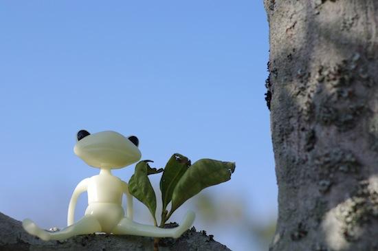 木登りだって得意だぜ!
