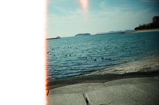 一枚目はこんな感じ(´ー`;)まぁLOMO LC-A+で撮った写真はだいたい一枚目こんな感じなんですけどね。