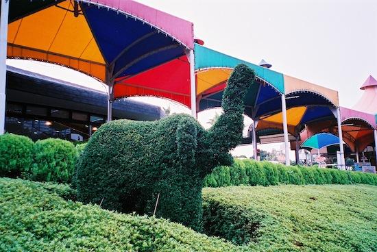 緑はどうだろう?ゾウさんは可愛いね。