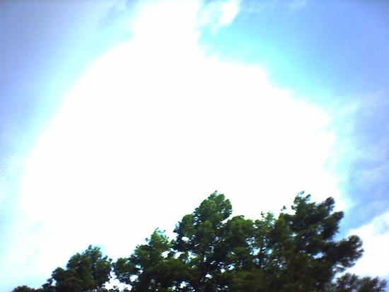 やっぱり青空撮るのいいねー!強烈なインパクトだ!