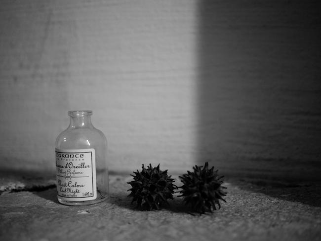 瓶:LUMIX DMC-GF1