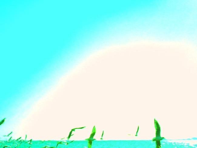 デジタルハリネズミグル:作例写真