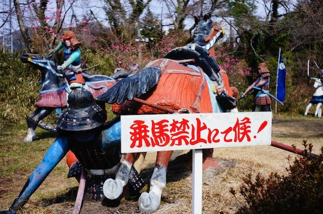 落馬する危険性があるので乗馬禁止にて候!