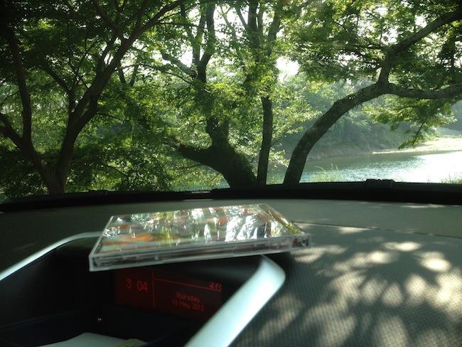 車の中から外の木々を撮ろうとします。