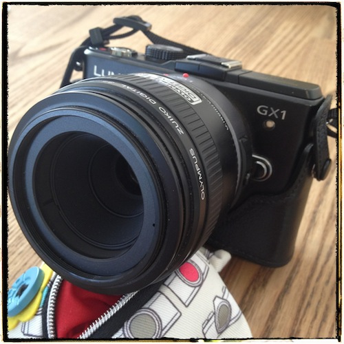 GX1がやっぱり大きいカメラのイメージになります。